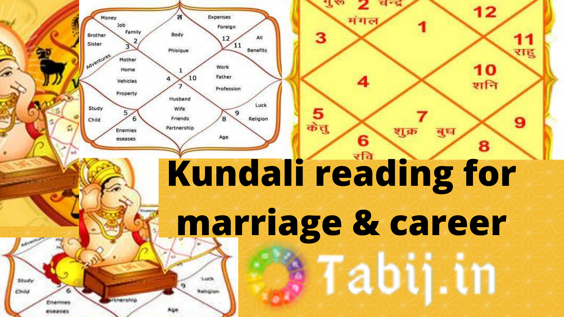 kundali reading for marriage & career