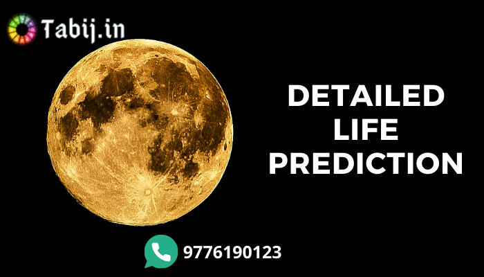 detailed life prediction free